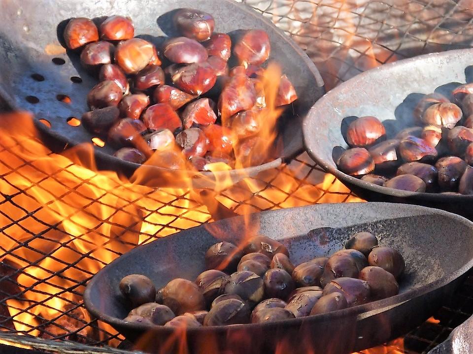 frutti-autunnali-castagne