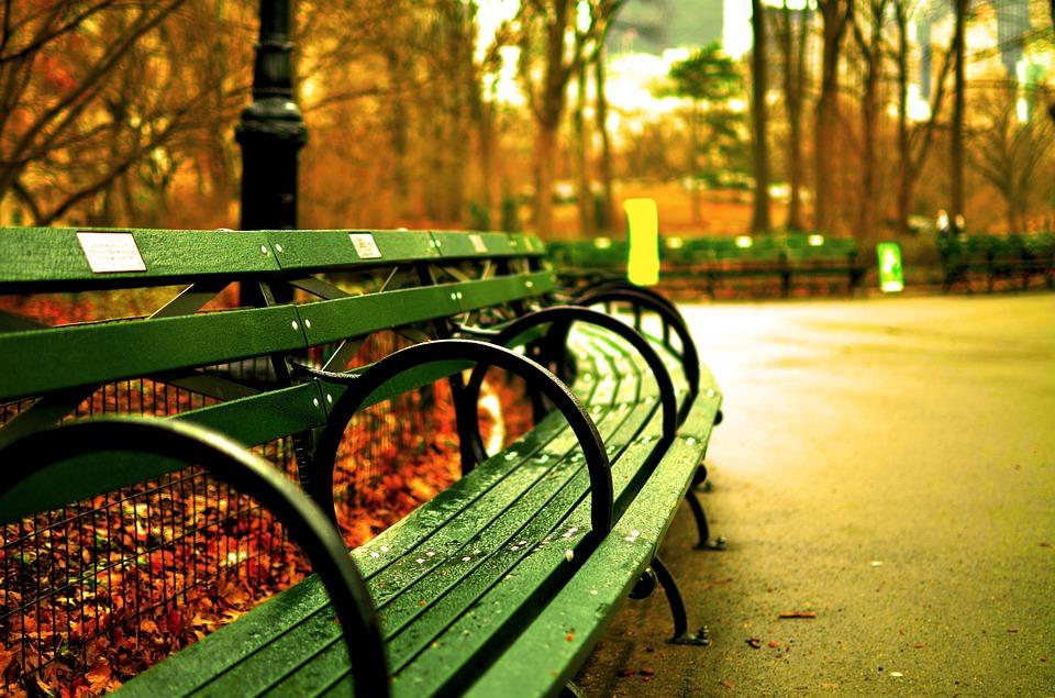 fogliage-in-autunno-panchina