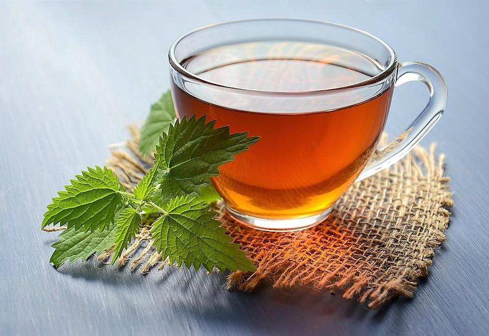 autunno-tisana-tea